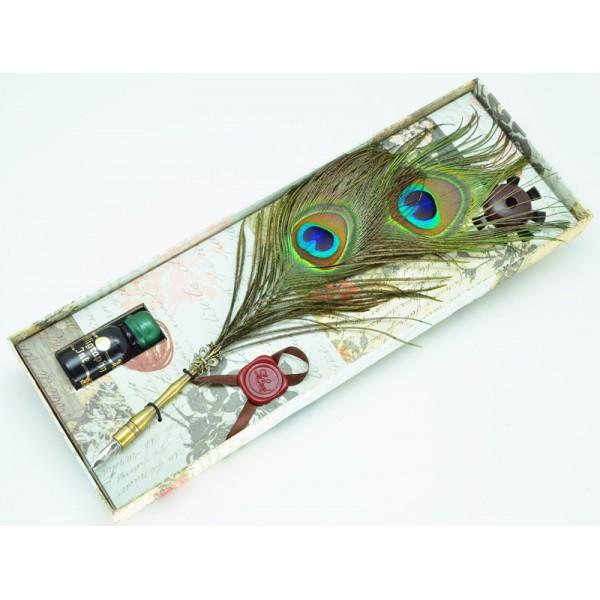 Calligraphy dip pen set, Peacock feather